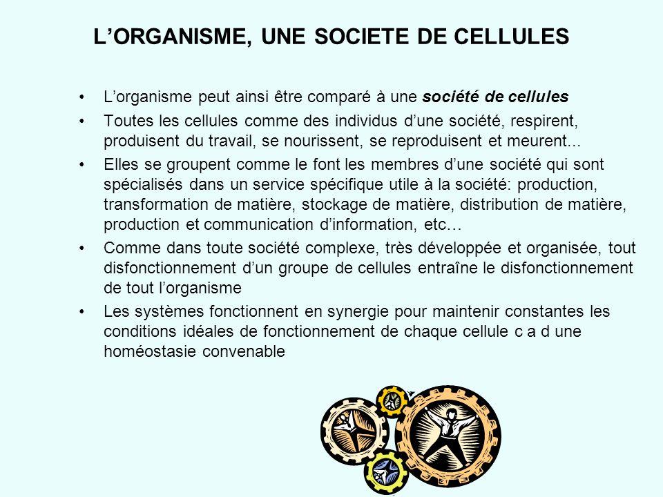 L'ORGANISME, UNE SOCIETE DE CELLULES