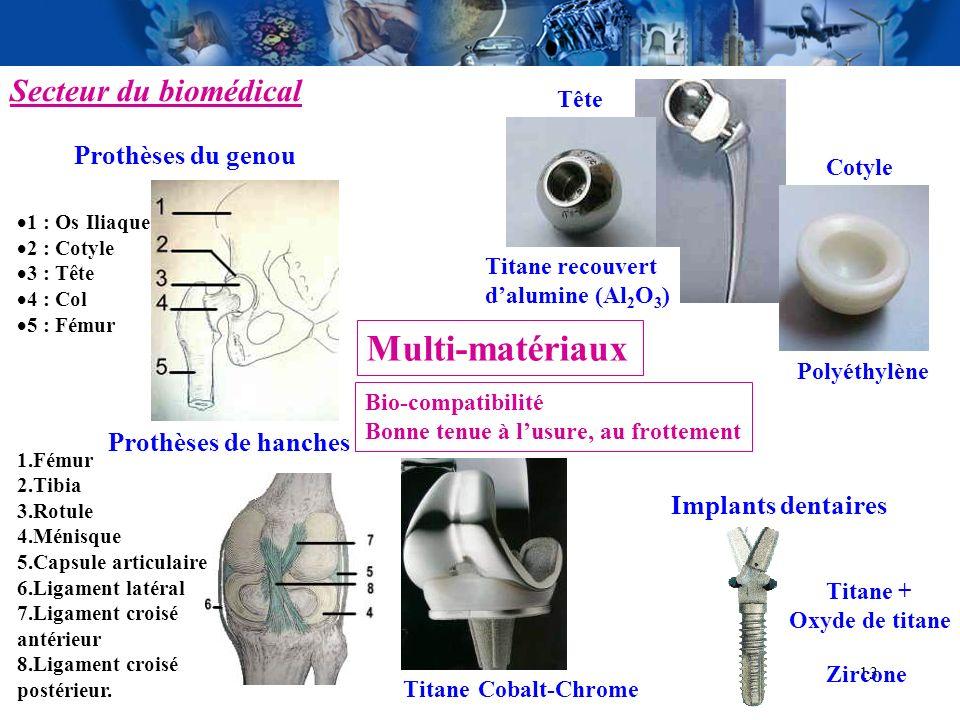 Multi-matériaux Secteur du biomédical Prothèses du genou