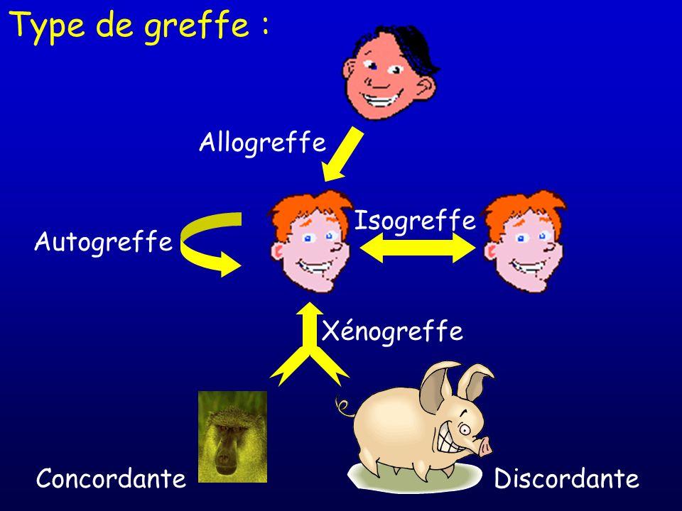 Type de greffe : Allogreffe Isogreffe Autogreffe Xénogreffe