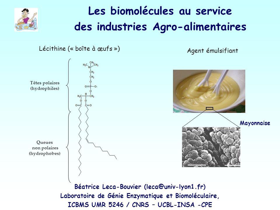 Les biomolécules au service des industries Agro-alimentaires