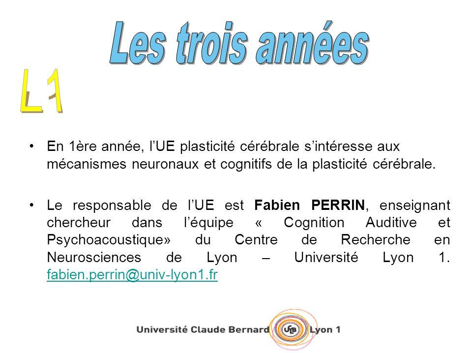 Les trois annéesL1. En 1ère année, l'UE plasticité cérébrale s'intéresse aux mécanismes neuronaux et cognitifs de la plasticité cérébrale.