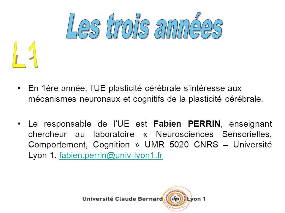 Les trois années L1. En 1ère année, l'UE plasticité cérébrale s'intéresse aux mécanismes neuronaux et cognitifs de la plasticité cérébrale.