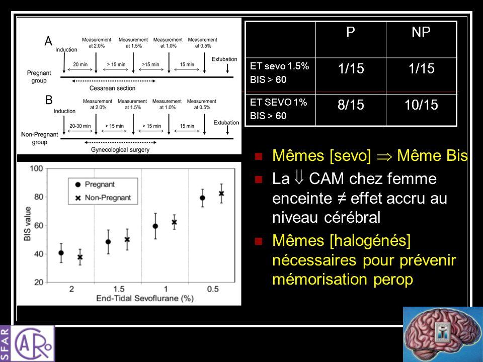 La  CAM chez femme enceinte ≠ effet accru au niveau cérébral