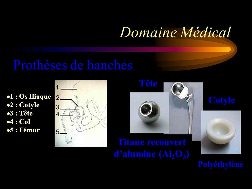 Domaine Médical Prothèses de hanches Tête Cotyle Titane recouvert