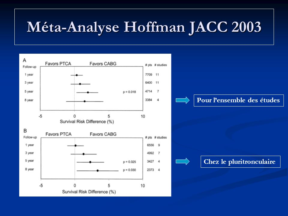 Méta-Analyse Hoffman JACC 2003