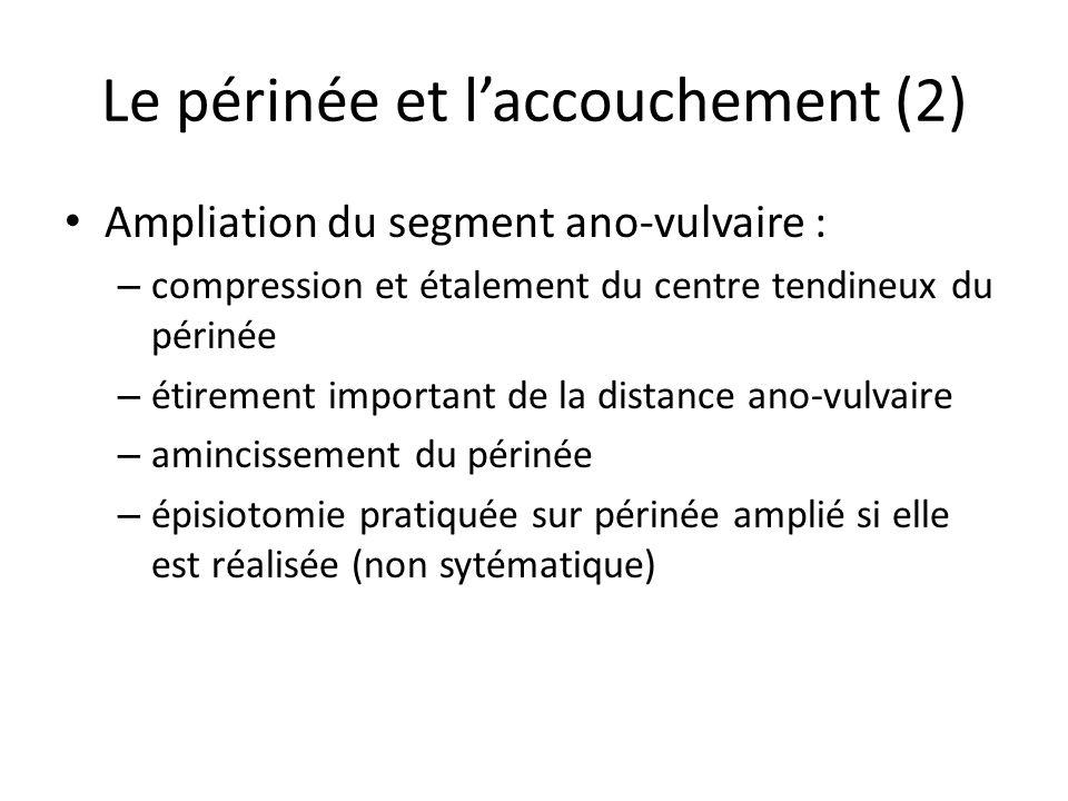 Le périnée et l'accouchement (2)