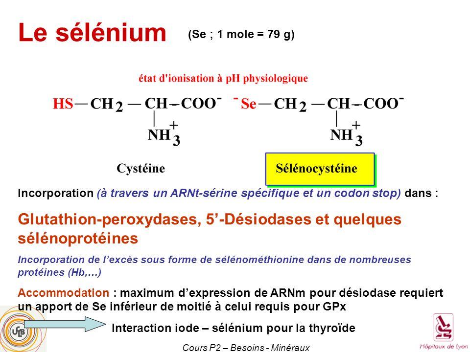 Cours P2 – Besoins - Minéraux