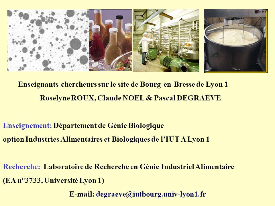 E-mail: degraeve@iutbourg.univ-lyon1.fr