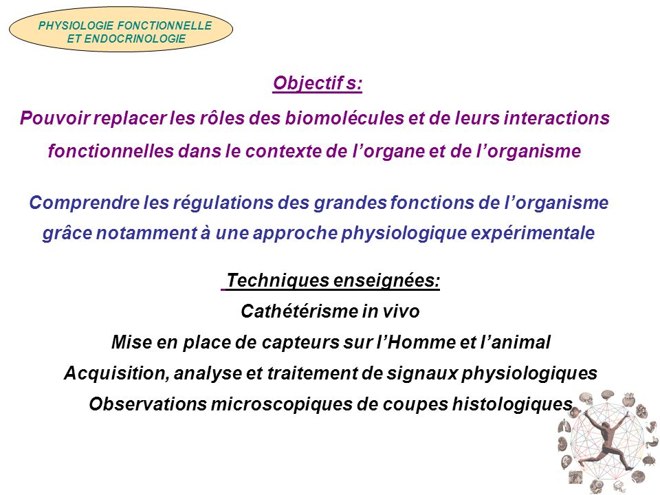 PHYSIOLOGIE FONCTIONNELLE