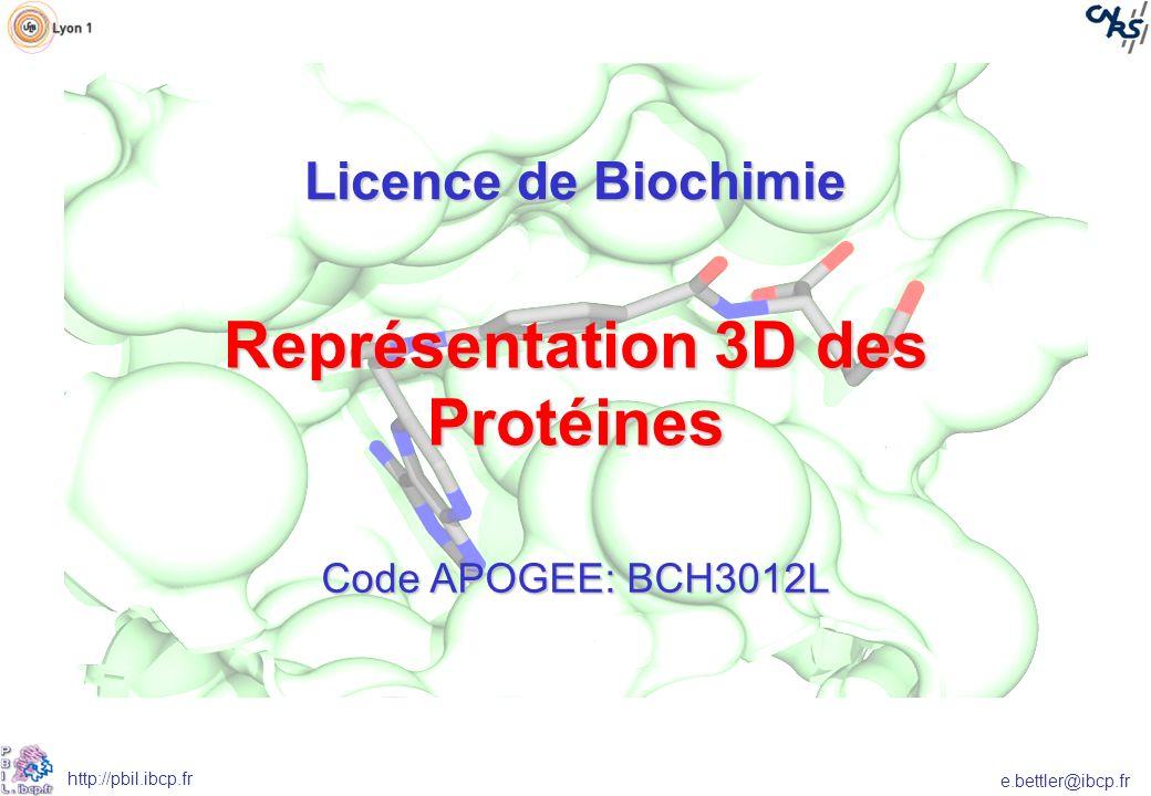 Représentation 3D des Protéines