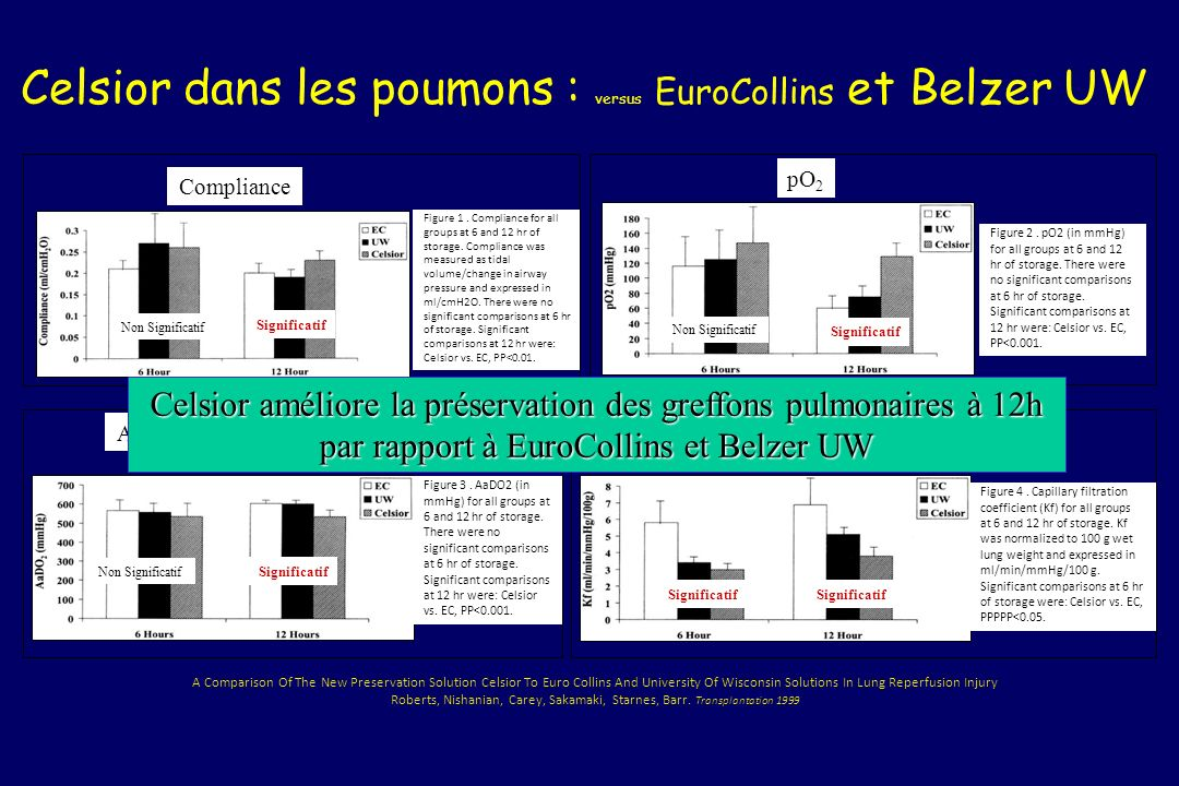 Celsior dans les poumons : versus EuroCollins et Belzer UW