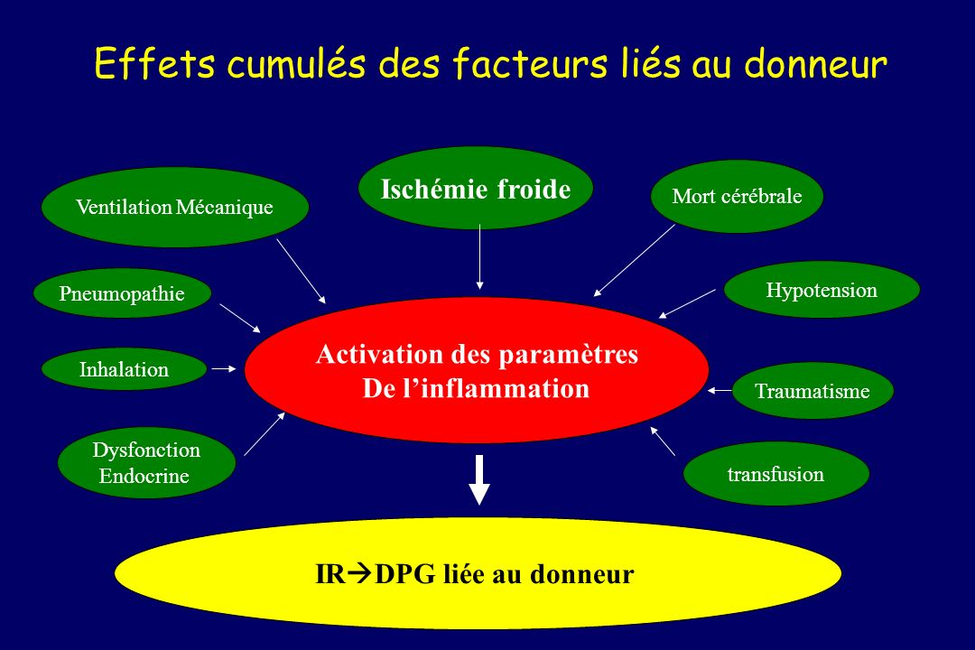 Effets cumulés des facteurs liés au donneur