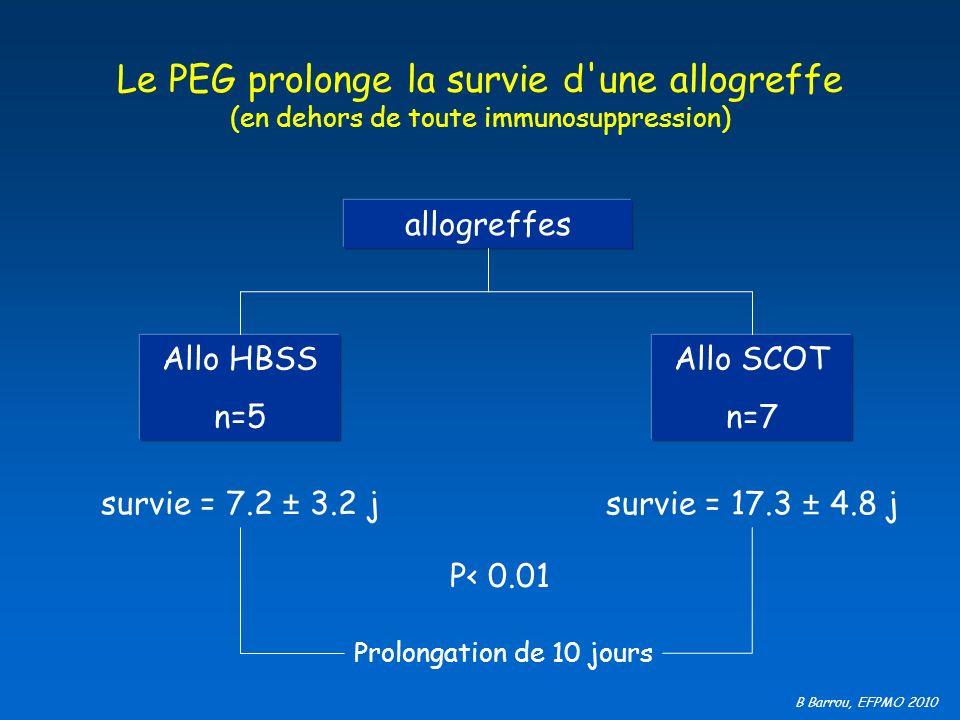 Le PEG prolonge la survie d une allogreffe (en dehors de toute immunosuppression)