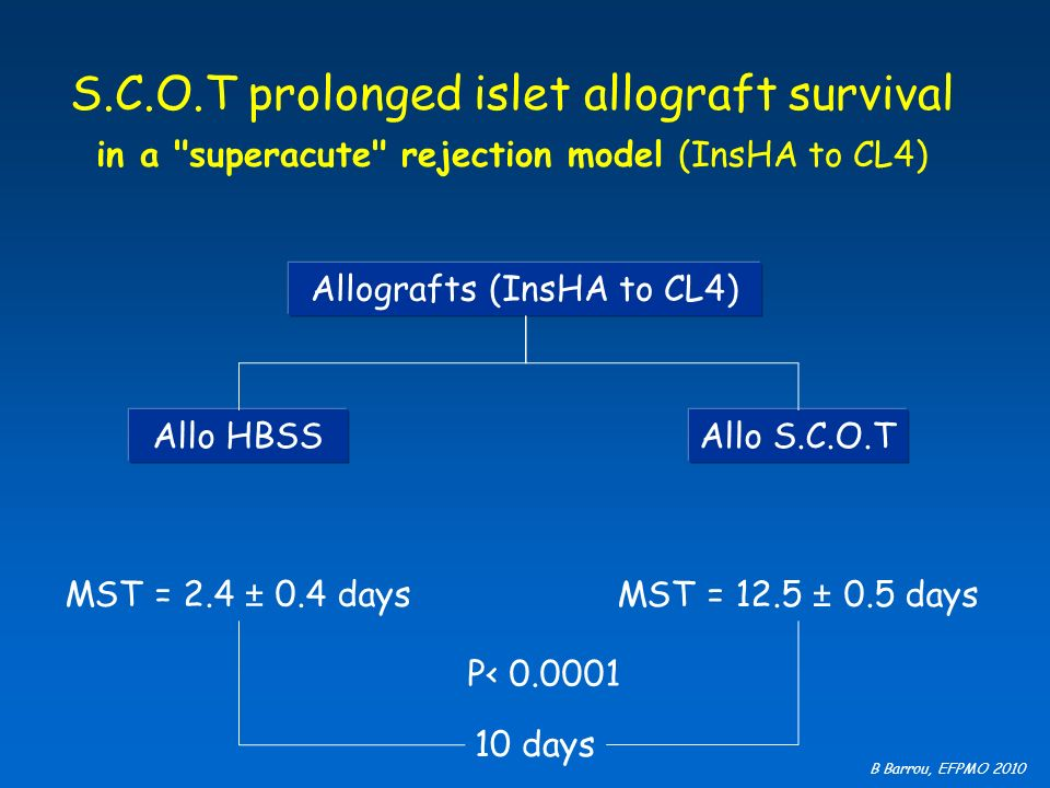 Allografts (InsHA to CL4)