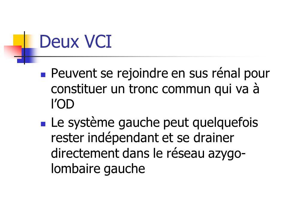Deux VCI Peuvent se rejoindre en sus rénal pour constituer un tronc commun qui va à l'OD.