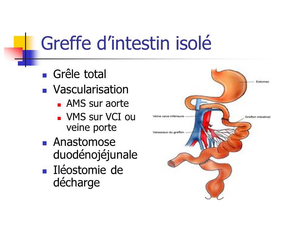 Greffe d'intestin isolé