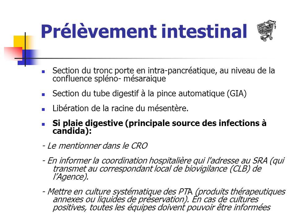 Prélèvement intestinal
