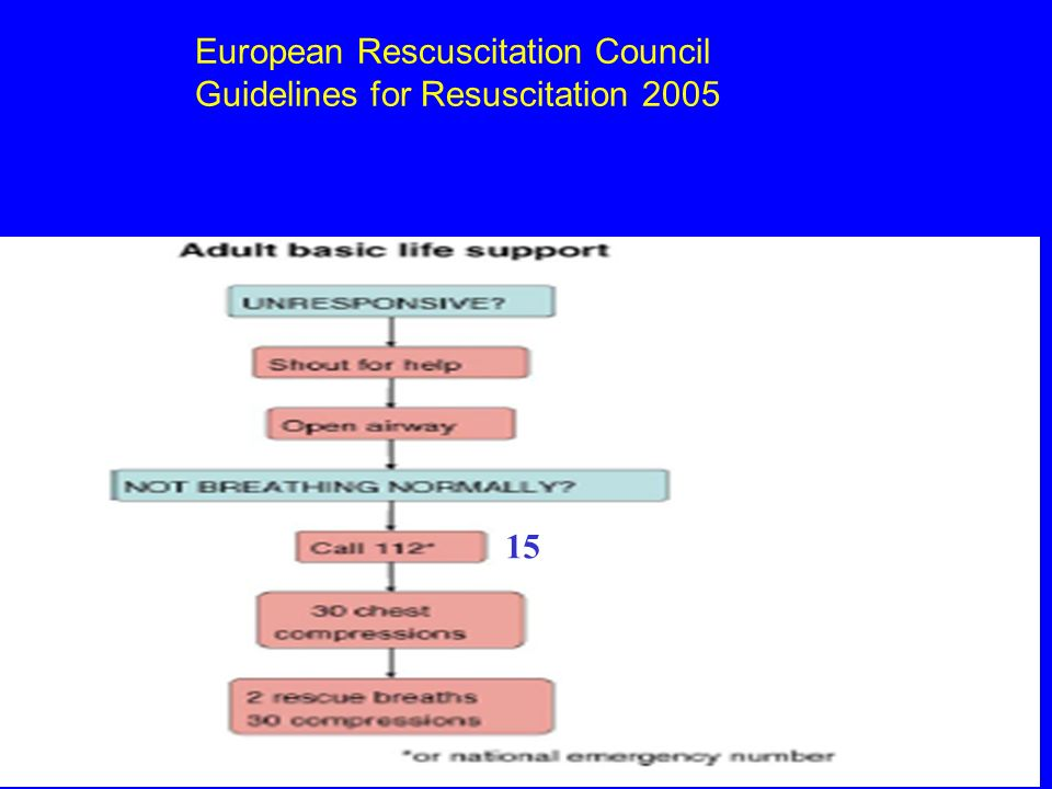 European Rescuscitation Council