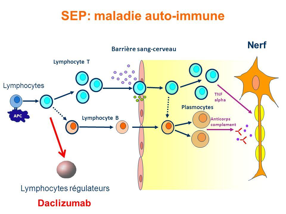 SEP: maladie auto-immune