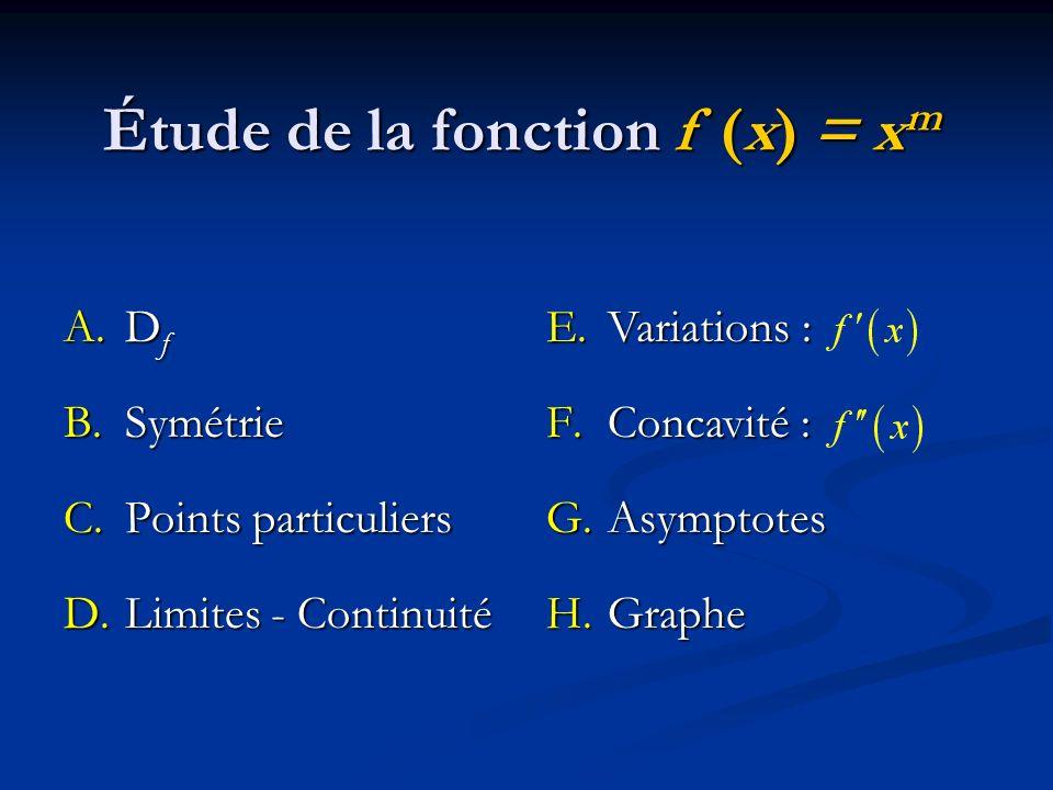 Étude de la fonction f (x) = xm