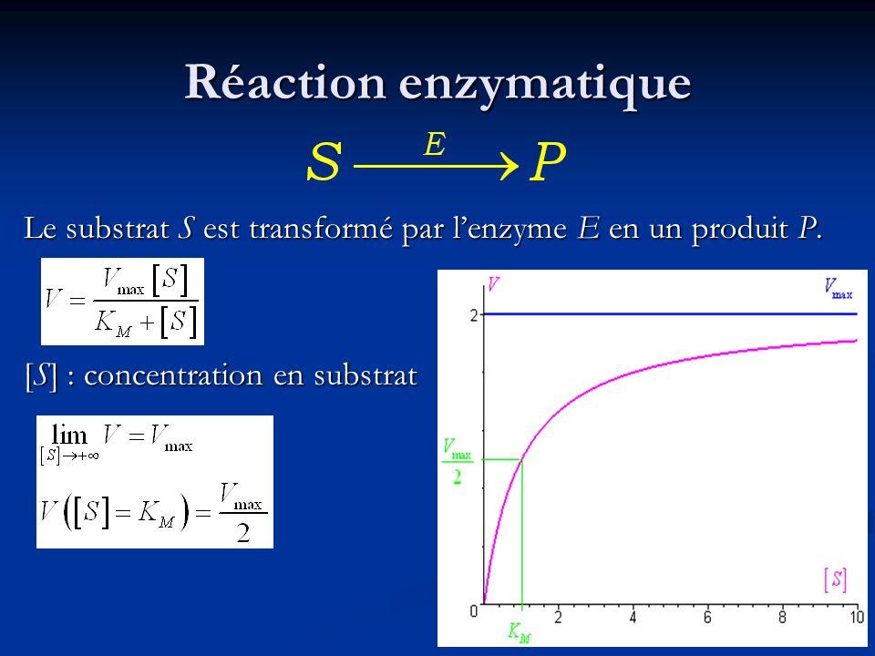 Réaction enzymatique Le substrat S est transformé par l'enzyme E en un produit P.