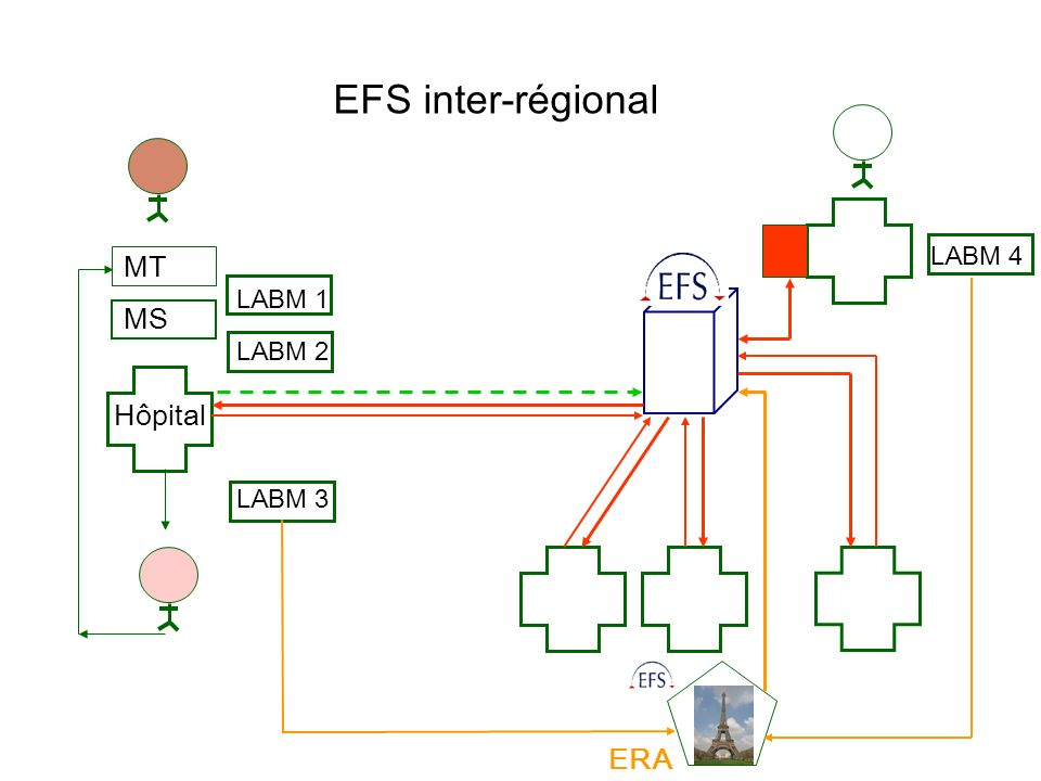 EFS inter-régional LABM 4 MT LABM 1 MS LABM 2 Hôpital LABM 3 ERA