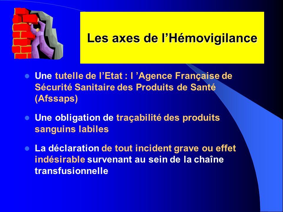 Les axes de l'Hémovigilance