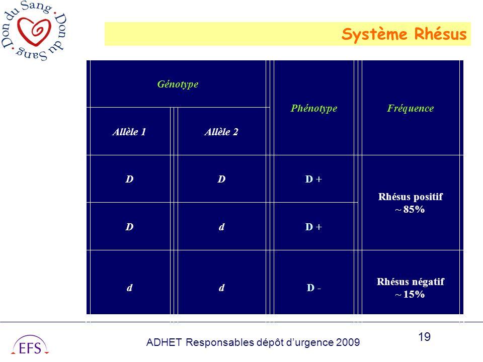 Système Rhésus Génotype Phénotype Fréquence Allèle 1 Allèle 2 D D +