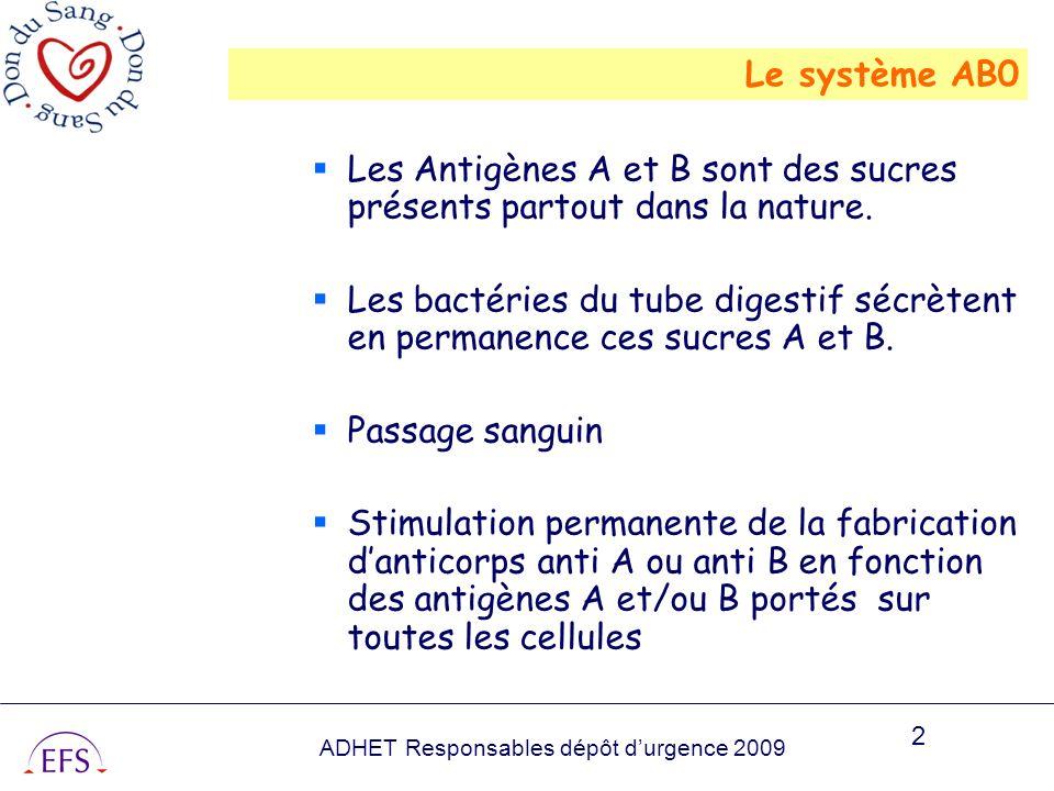 Le système AB0 Les Antigènes A et B sont des sucres présents partout dans la nature.