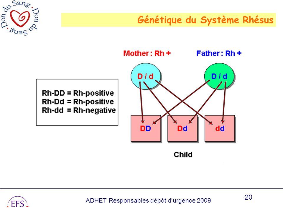 Génétique du Système Rhésus