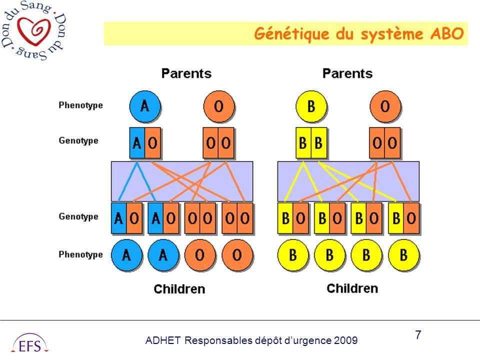 Génétique du système ABO