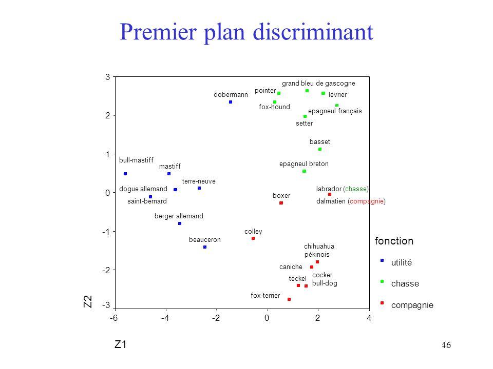 Premier plan discriminant