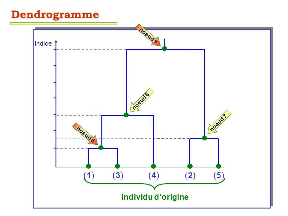 Dendrogramme (1) (3) (4) (2) (5) Individu d'origine indice noeud 9