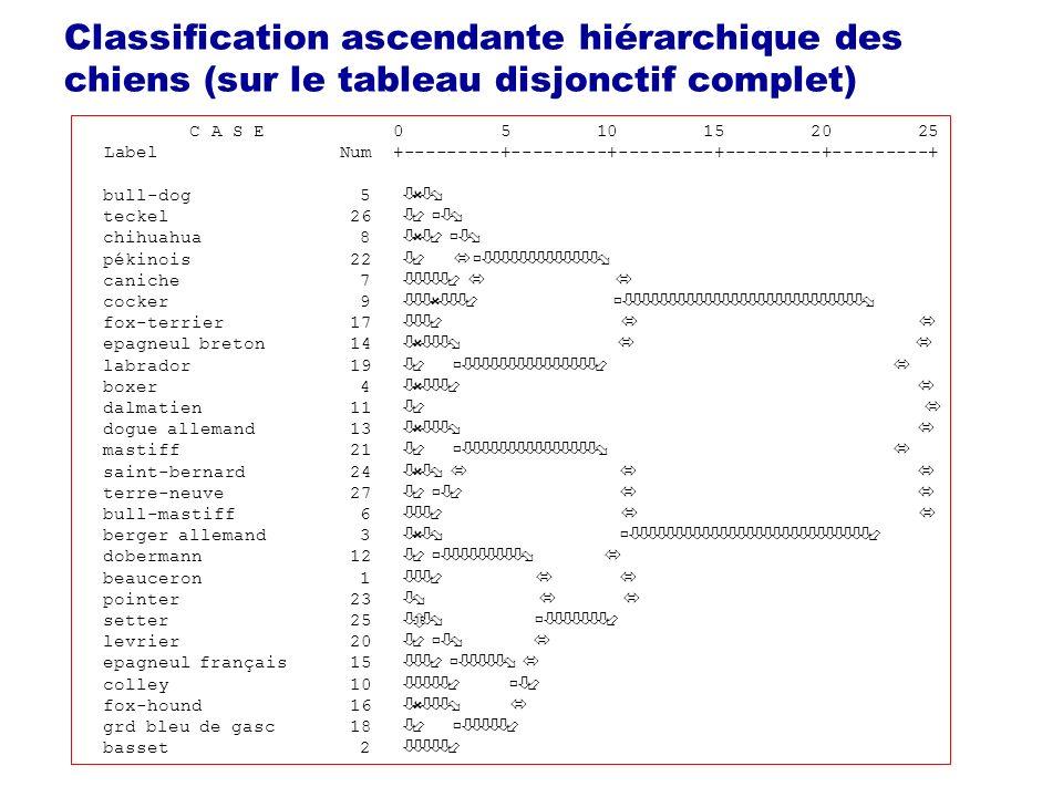 Classification ascendante hiérarchique des chiens (sur le tableau disjonctif complet)