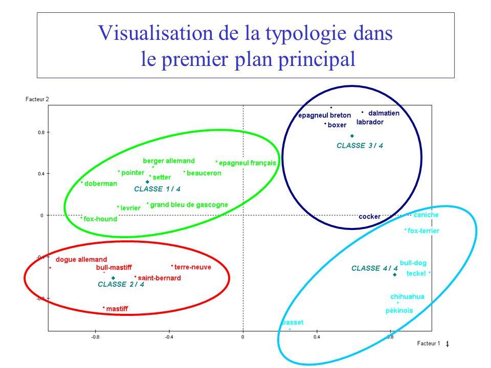 Visualisation de la typologie dans le premier plan principal