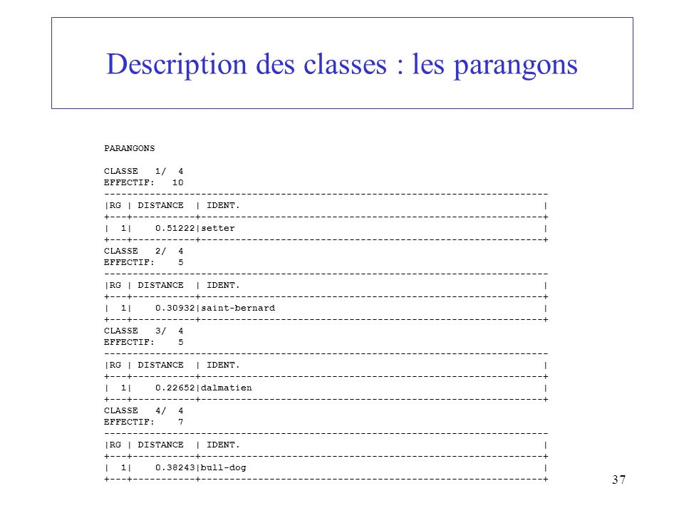 Description des classes : les parangons