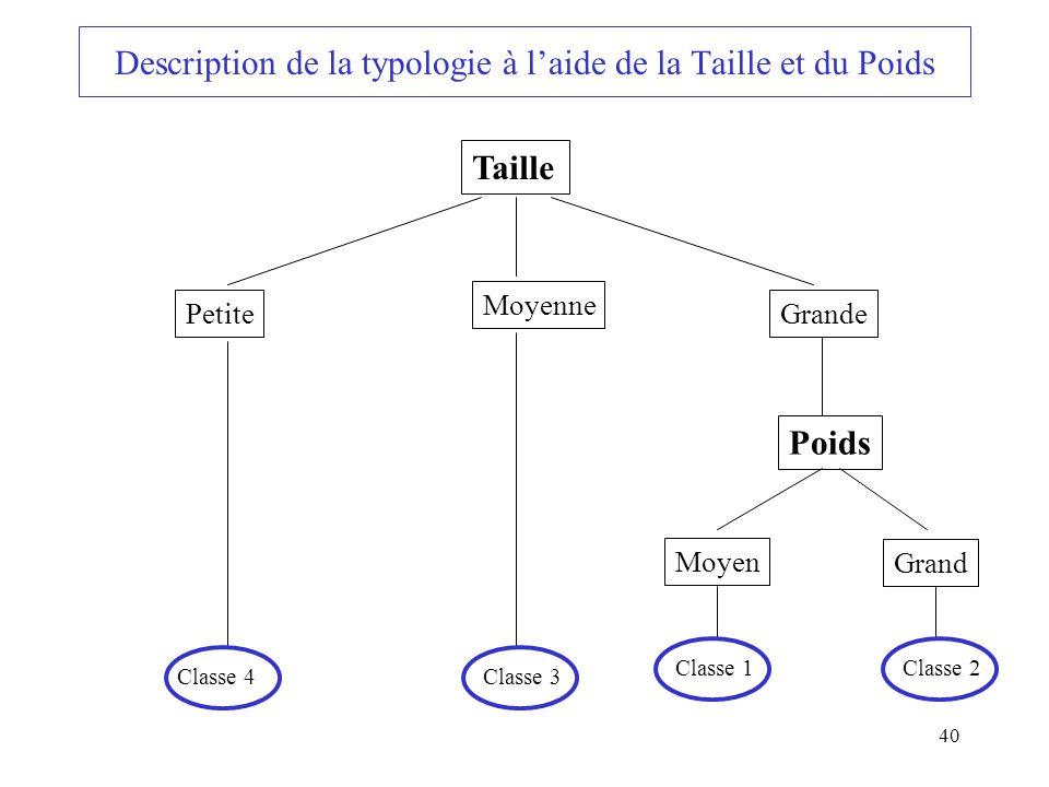 Description de la typologie à l'aide de la Taille et du Poids