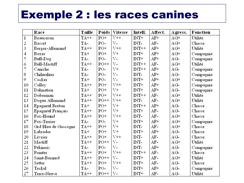 Exemple 2 : les races canines