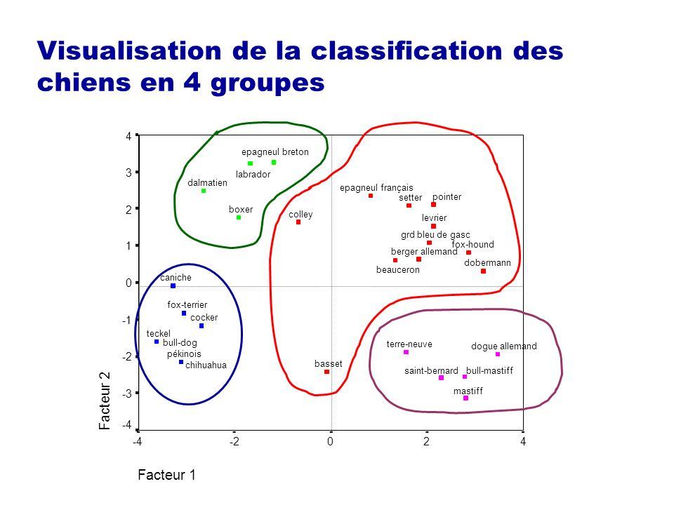 Visualisation de la classification des chiens en 4 groupes