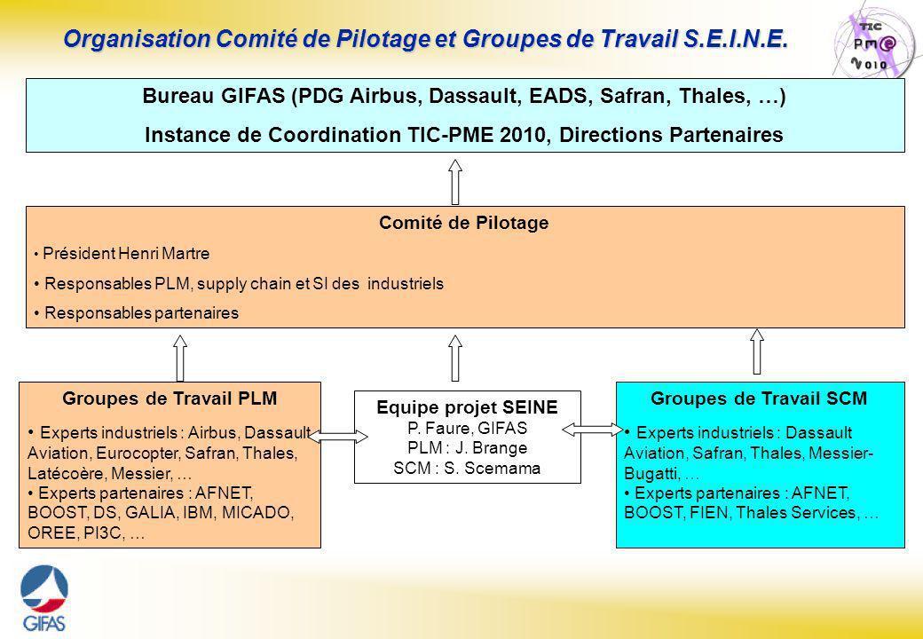 Organisation Comité de Pilotage et Groupes de Travail S.E.I.N.E.