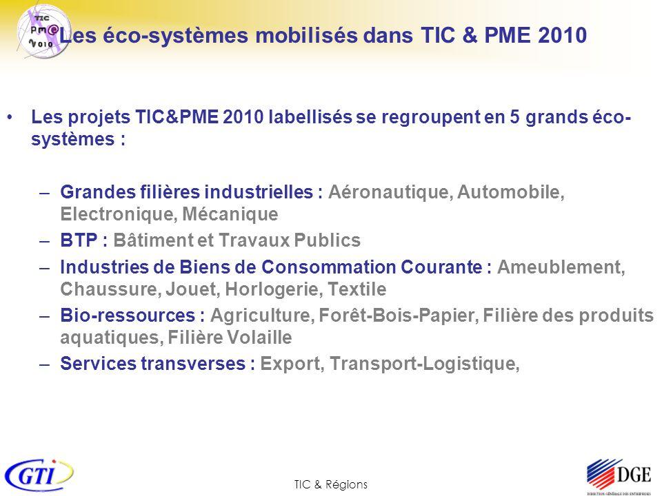 Les éco-systèmes mobilisés dans TIC & PME 2010