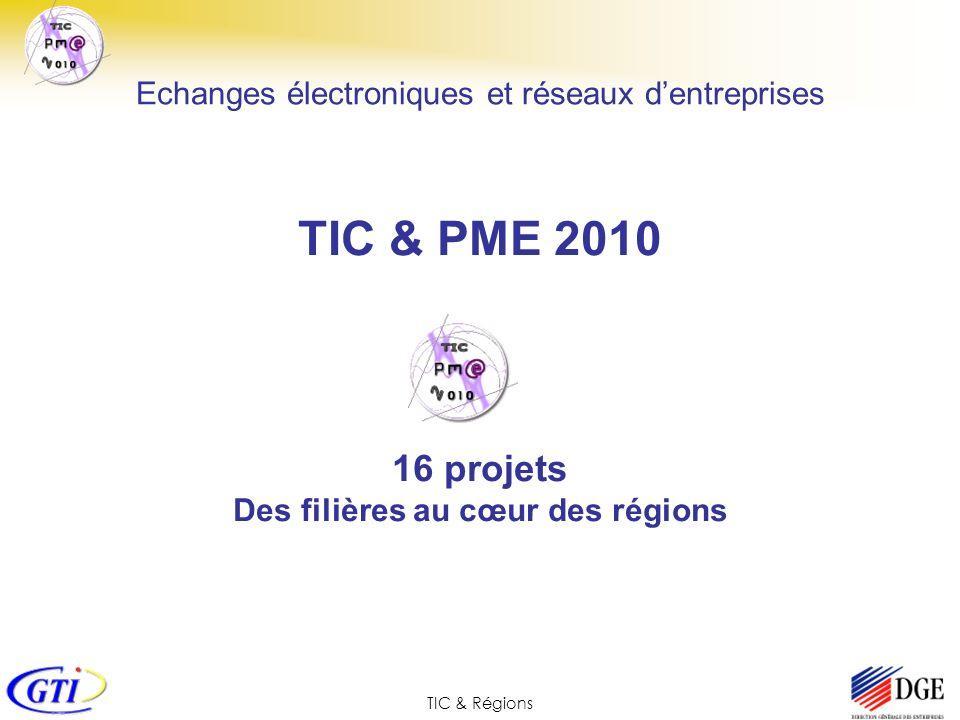 TIC & PME 2010 16 projets Des filières au cœur des régions