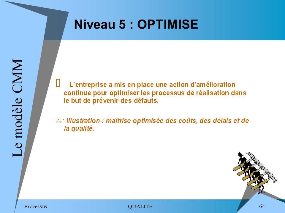 Niveau 5 : OPTIMISELe modèle CMM.