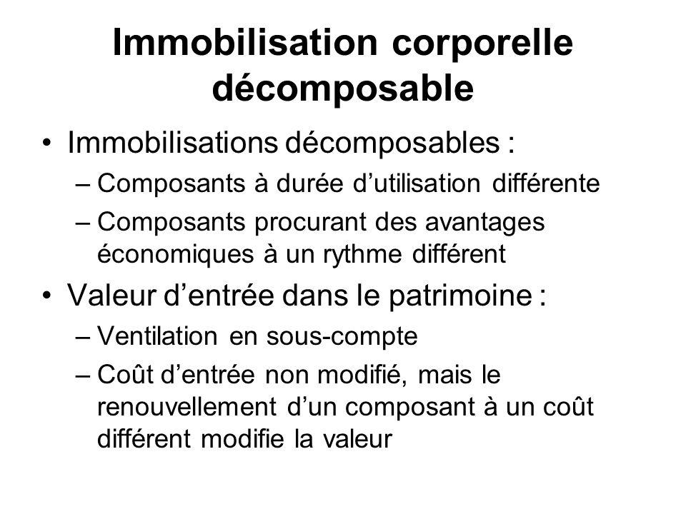 Immobilisation corporelle décomposable