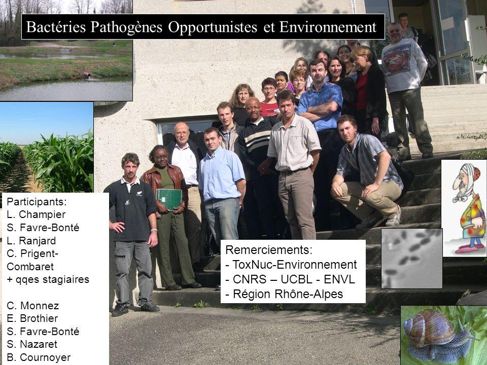 Bactéries Pathogènes Opportunistes et Environnement
