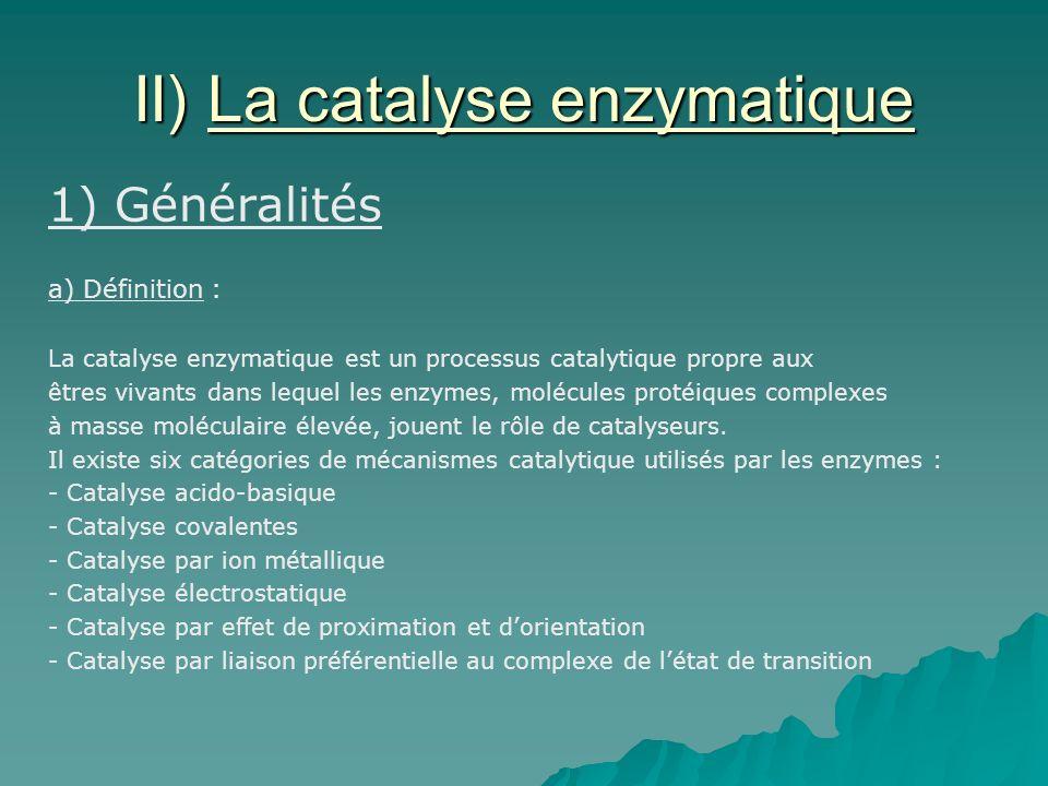 II) La catalyse enzymatique