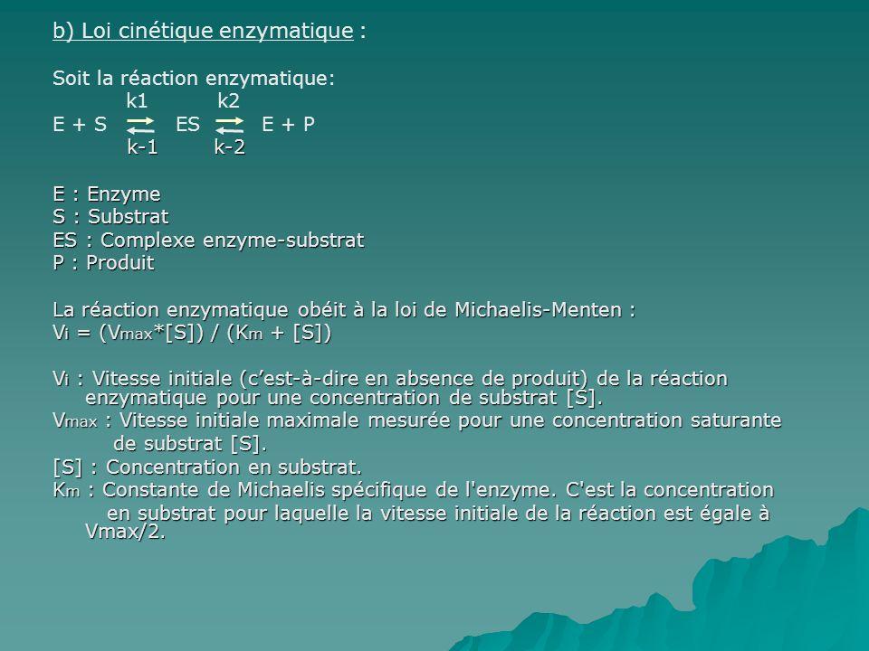 b) Loi cinétique enzymatique :