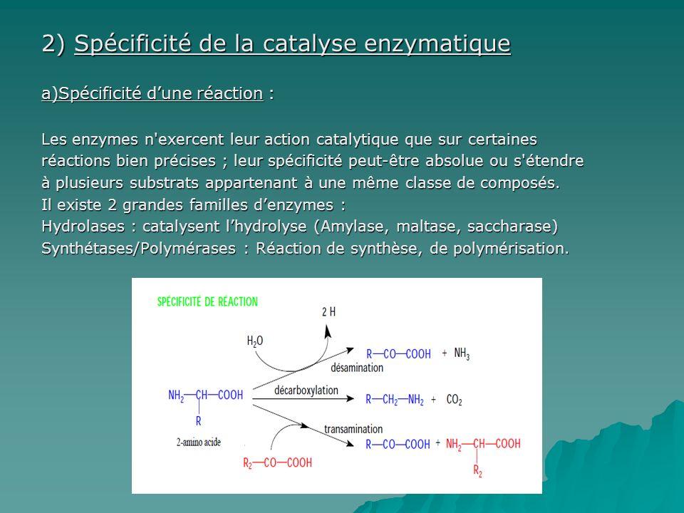 2) Spécificité de la catalyse enzymatique
