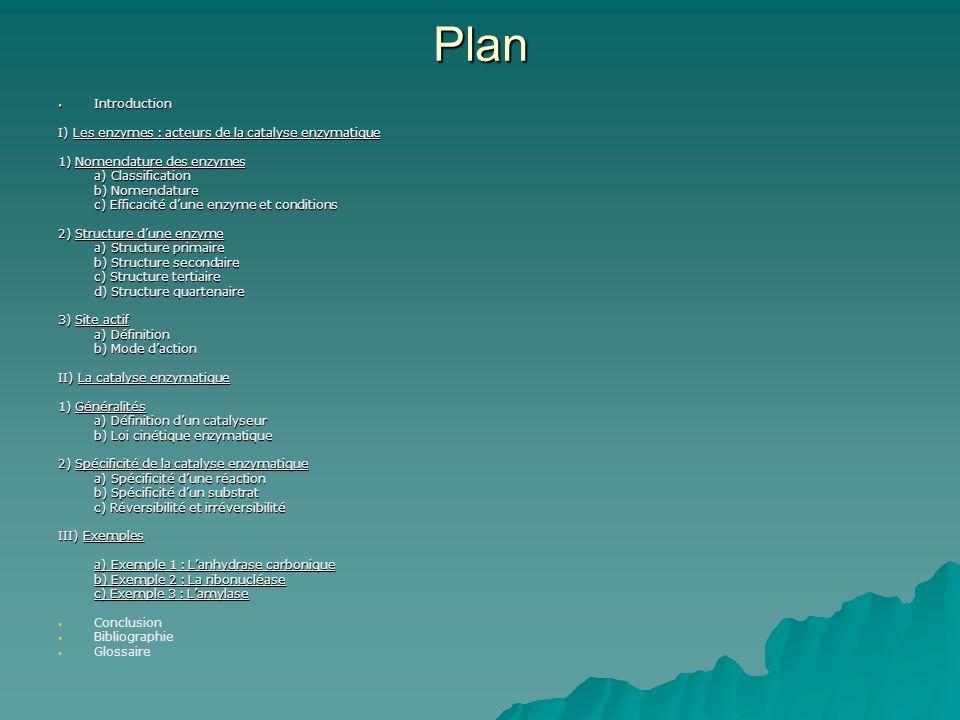 Plan Introduction I) Les enzymes : acteurs de la catalyse enzymatique