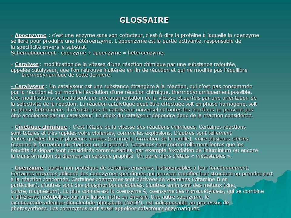 GLOSSAIRE - Apoenzyme : c'est une enzyme sans son cofacteur, c est-à-dire la protéine à laquelle la coenzyme.